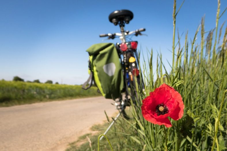 Image of bike and flowers by Thomas B. from Pixabay