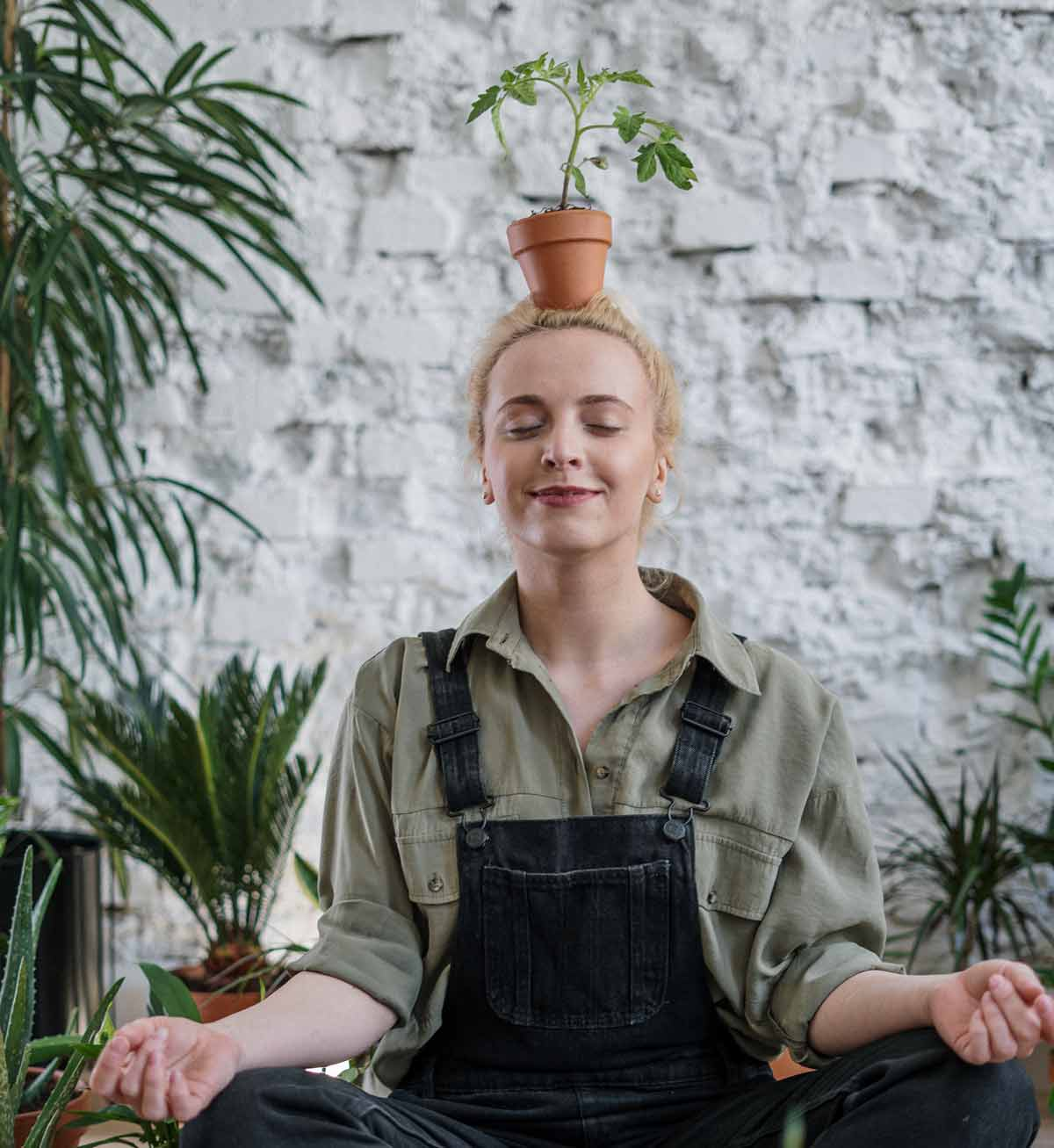 Picture of lady with plant pot on head meditating