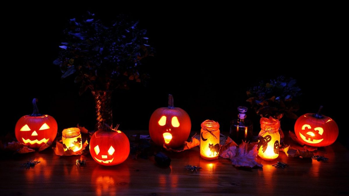 Feature Image, pumpkins