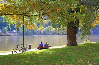 Feature Image, pair sitting at bench in park