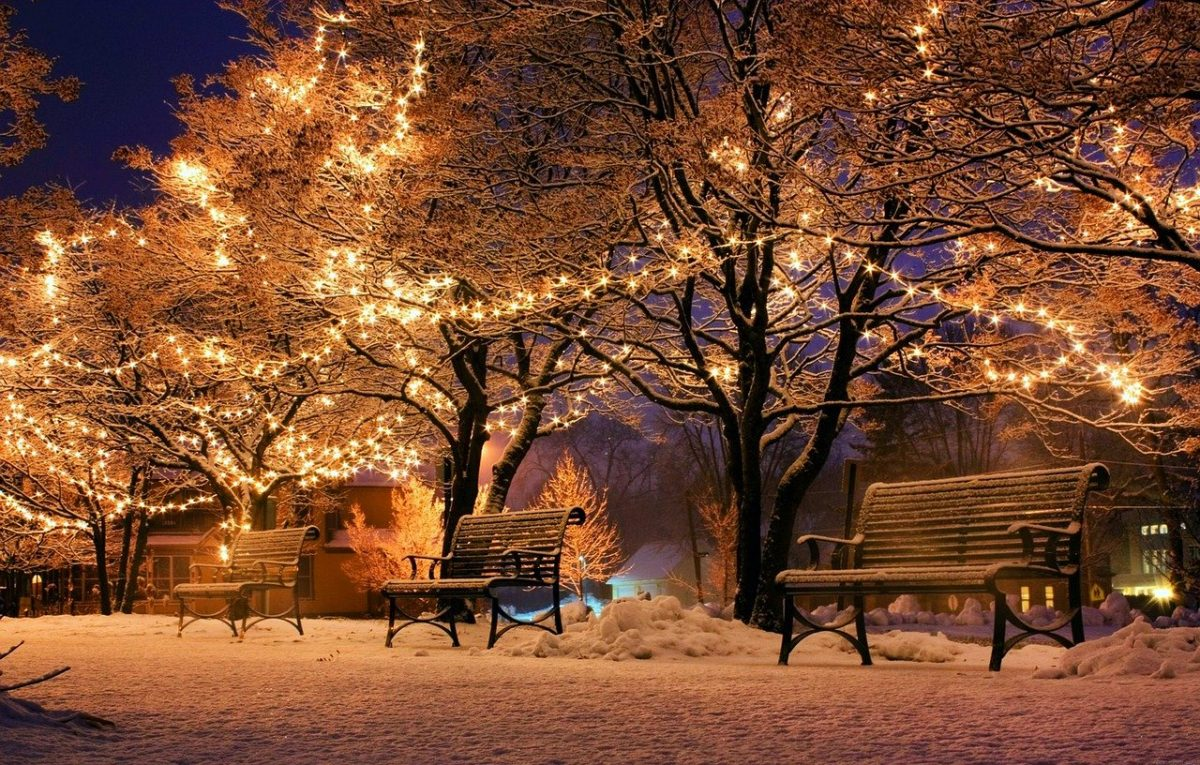 Feature Image: Winter scene, benches with trees and Christmas lights